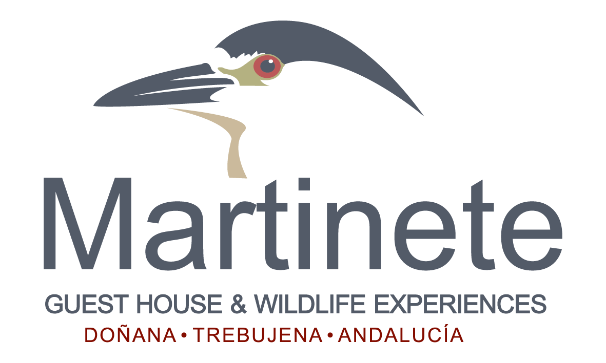 Martinete